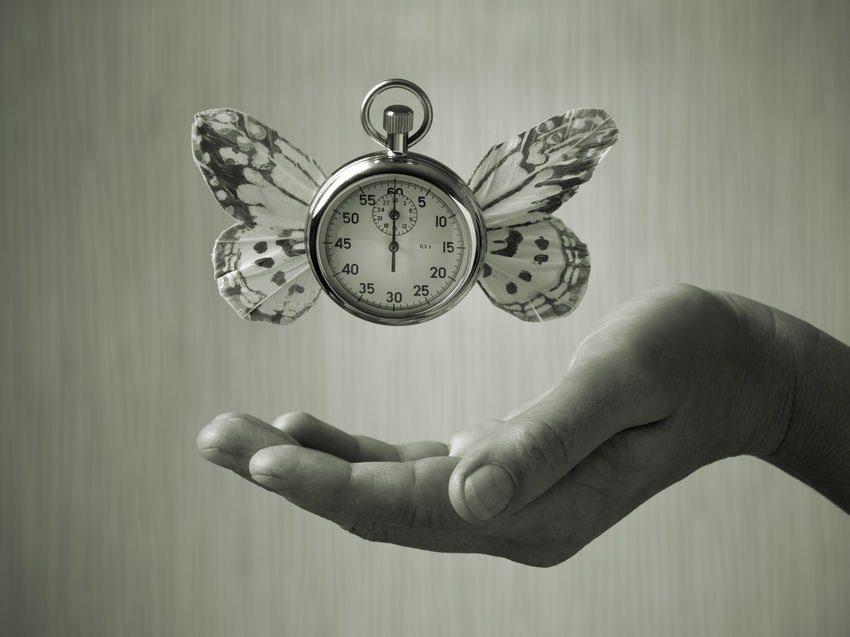 Reloj con alas de mariposa como ejemplo de qué significan objetivo y subjetivo en efectividad